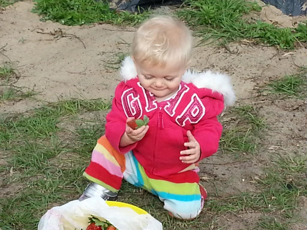 Chloe strawberry