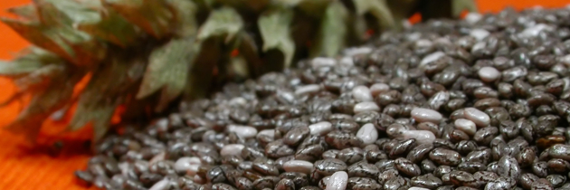 Q & A on flax, chia and hemp: