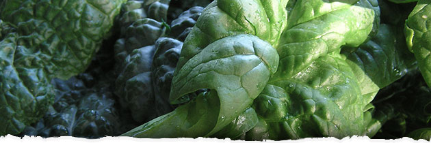 Go Green and Eat Your Greens! Recipes from Samadhi's Kitchen